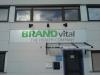 brand-vital